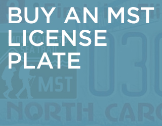 Buy an MST License Plate