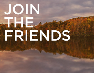 Join the Friends