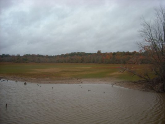 A view of the lake, in drought times.