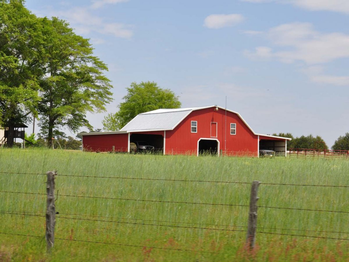 A Sampson County farm | Photo © Donna Bailey-Taylor