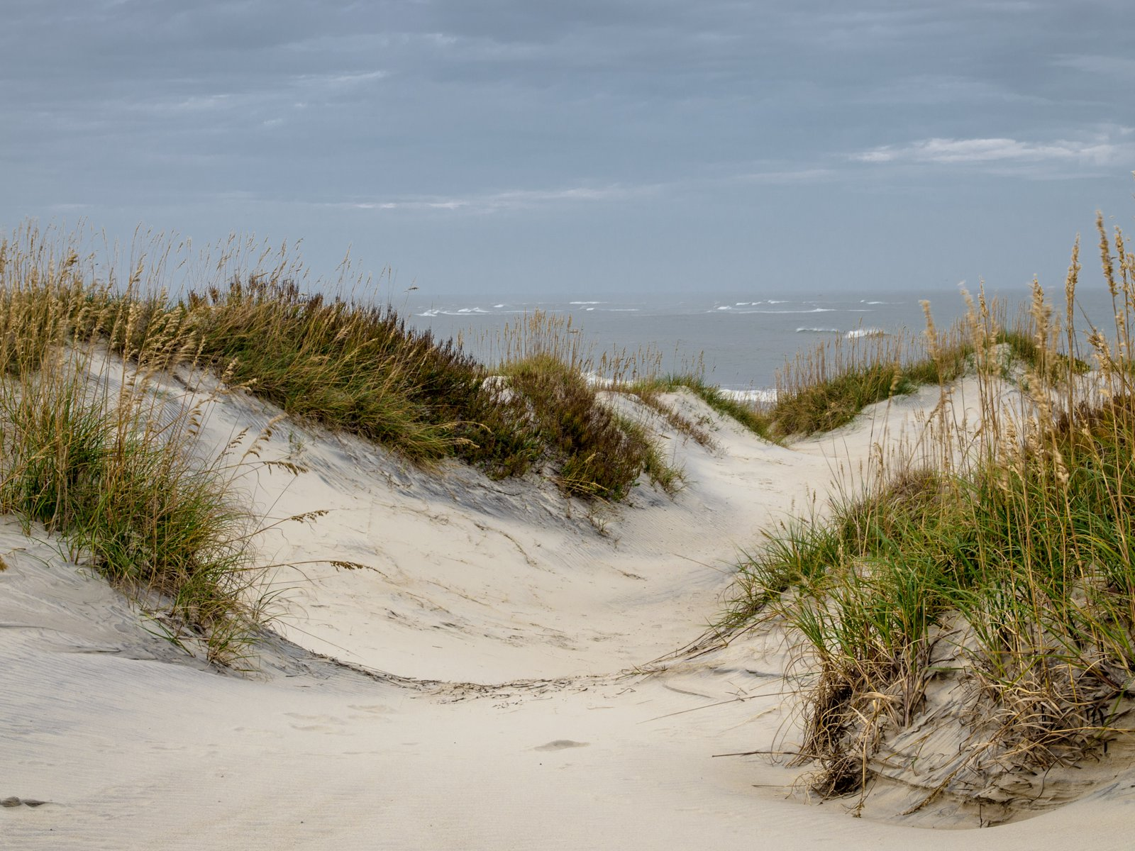 Pea Island Dunes | Photo © Paul Travis