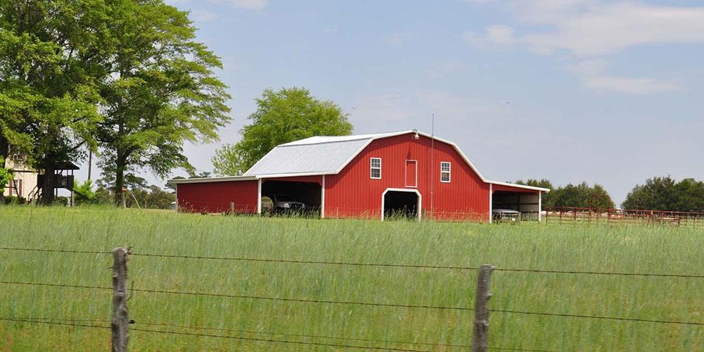 A Sampson County farm | Photo © Donna Bailey-Taylor