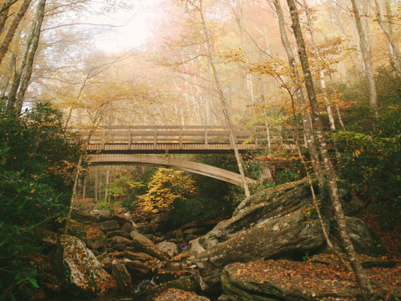 Bridge Over Boone Fork | Photo © Adam Collins
