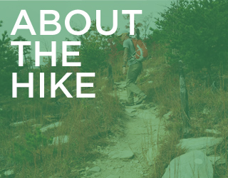 About the Hike