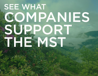 See what companies support the MST