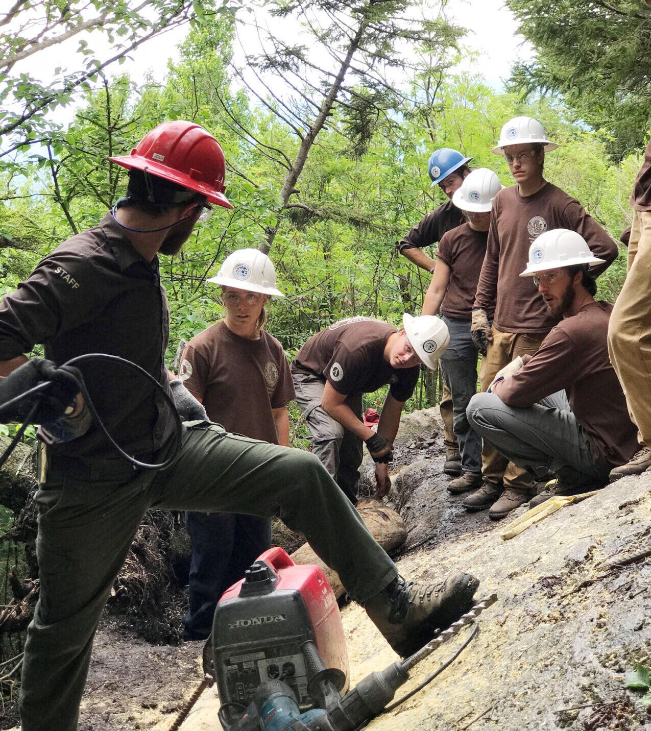Mt. Mitchell Trail restoration